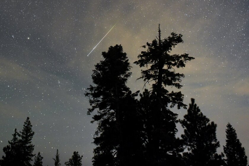 A Perseid meteor streaks across the sky above desert pine trees Thursday in the Spring Mountains National Recreation Area, Nevada.