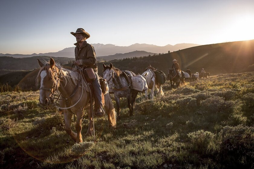 'Unbranded'