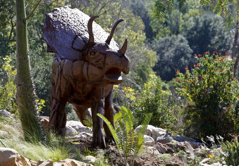 This triceratops sculpture constructed of metal is one of the eight sculptures by artist Ricardo Breceda that have recently been installed at the Alta Vista Botanical Garden at Brengle Terrace Park in Vista.  Photo by Don Boomer