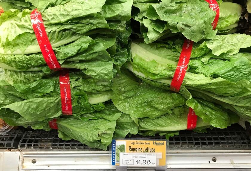 Another E. coli outbreak hits California romaine lettuce
