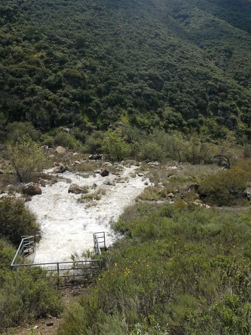 Released water to the SD River Streambed.jpg