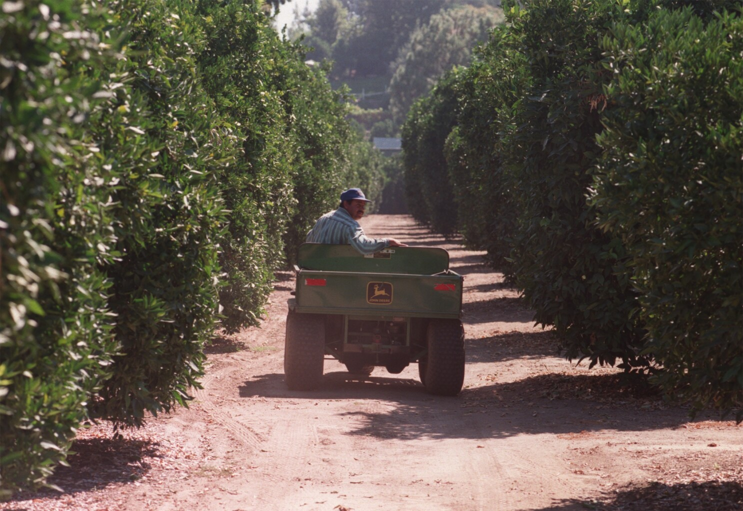 Newsletter: The uncertain fate of the San Fernando Valley's last remaining commercial citrus grove