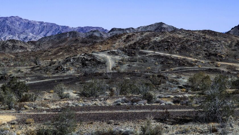 3039102_ME_0228_Desert_Development_IK