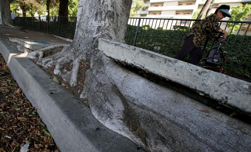 Broken sidewalks