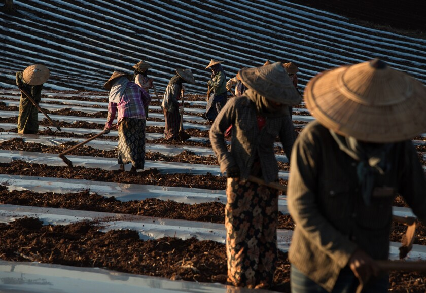 Tensions over land are tearing at Myanmar