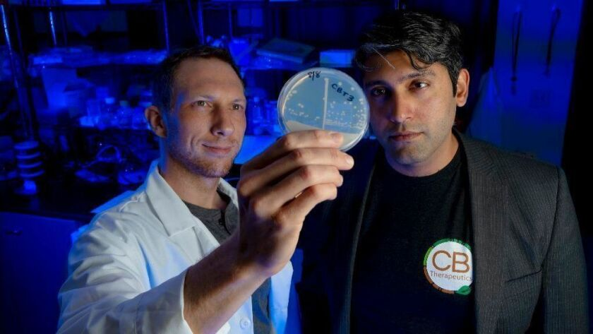 At their lab in Kearny Mesa, CB Therapeutics founders Jacob Vogan, Chief Scientific Officer (left) and Sher Ali Butt, CEO (right). The company has bio engineered yeast which produces cannabinoids using only sugar.
