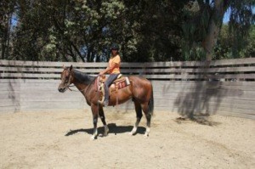 Marla Zanelli rides Adonis D N A, a former racehorse she recently rescued.