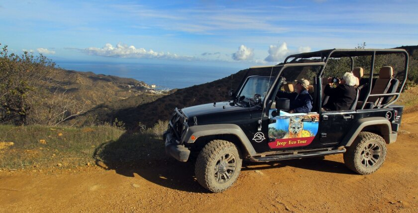 The Catalina Island Conservancy offers three-hour jeep tour into the island's hinterland.