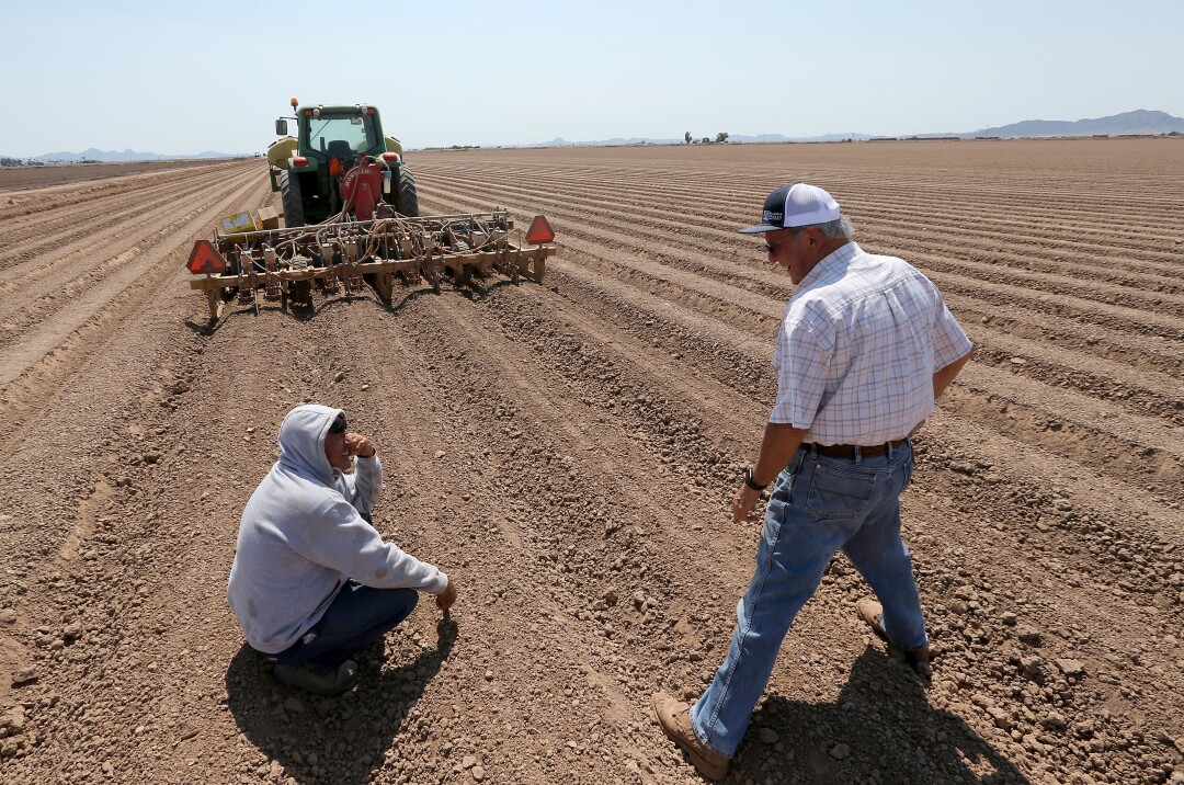 Farmer Bart Fisher shares a laugh with a worker while looking over seeding operations at one of his fields in Blythe.