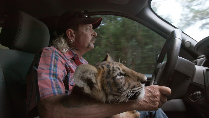 Netflix 'Tiger King': Joe Exotic loves new fame even in prison ...