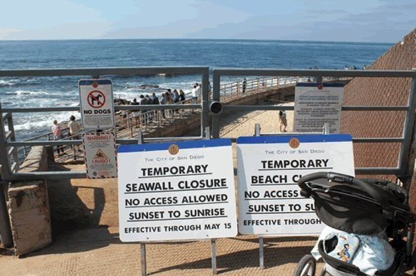 The current night time seawall and beach closure could become a 24-hour closure during pupping season. Pat Sherman photo