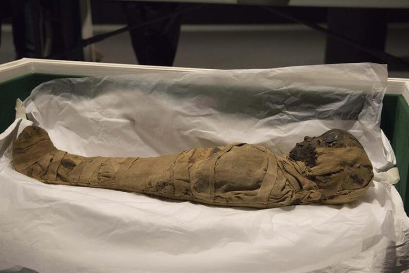 La muestra más antigua conocida del virus de la viruela, encontrada en la momia de un niño del siglo XVII, hace pensar a los investigadores que la historia de esta enfermedad es más reciente de lo que se cree. EFE/Archivo