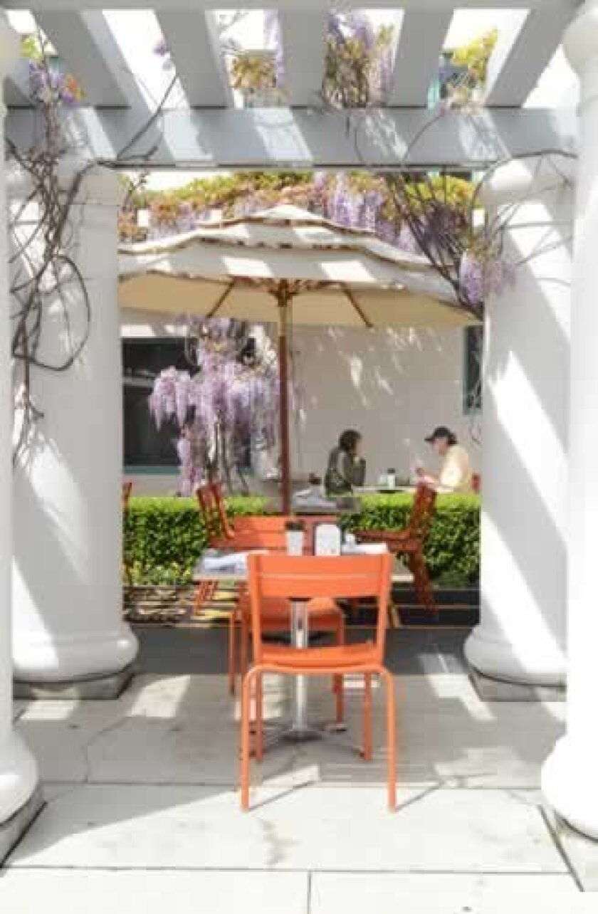 Museum Cafe's patio is framed by wisteria that is in its full glory in the early spring. Photos by Kelley Carlson