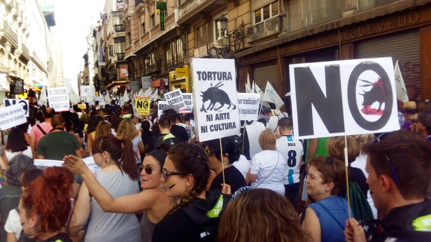"""Thousands of people took to the streets of Madrid on Sept. 10 for the largest anti-bullfighting march the city has seen in years. Some of the placards read: """"Bullfighting, school of cruelty"""" and """"Torture — neither art nor culture."""""""