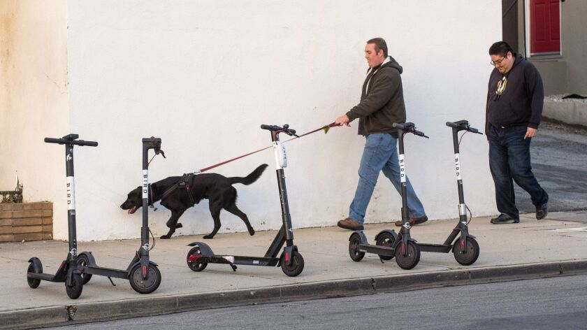 Bird scooters in Altadena. As they spread electric scooters out across dozens of cities, companies like Bird and Lime paid people a piecemeal rate to recharge them and, in Bird's case, repair them.