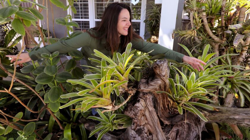 Juliana Raposo in front of her house with Neoregelia Bromeliads growing from various parts of an old tree.
