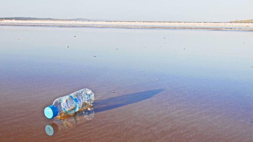 Essaouira sandy beach at sunrise with abandoned bottle casting long shadows. Reflections in shallow