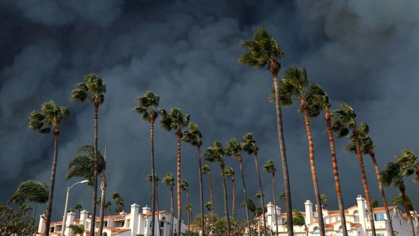 Smoke billows behind a building and palm trees along the PCH in western Malibu, Calif. on Nov. 9.