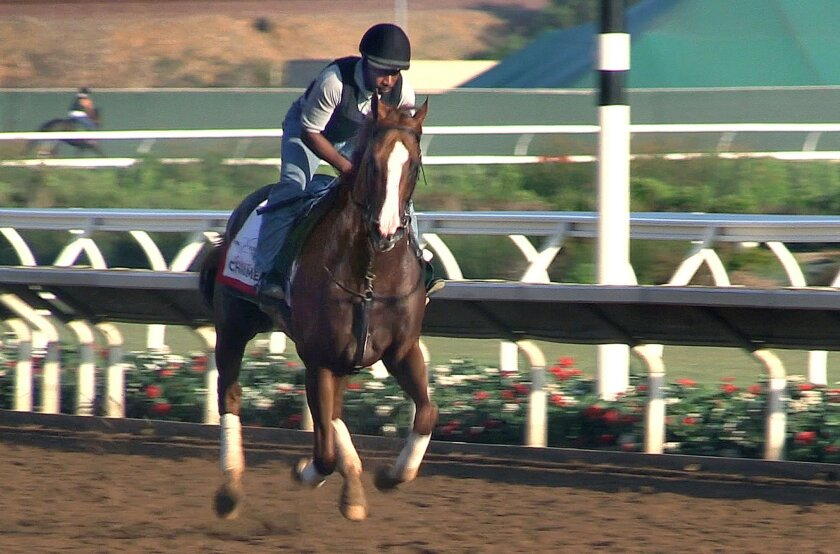 At Del Mar exercise rider Dihigi Gladney rides one lap of the track on California Chrome.