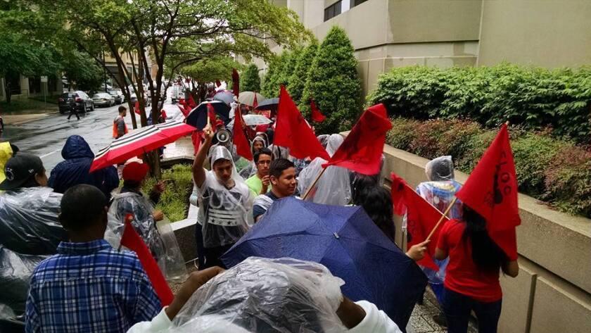 Foto de las redes sociales de FLCO donde se aprecia a decenas de campesinos marchando entre la lluvia en demanda de justicia en los campos de cultivo.