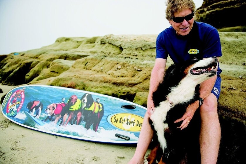 "Peter Noll, founder of SoCal Surf Dogs, shares a moment with Nani, his Bernese mountain dog, in Del Mar. Nani, a veteran surf competitor, will take part in the Helen Woodward Animal Center's eighth annual Surf Dog ""Surf-A-Thon"" on Sept. 8. Tom Pfingsten"
