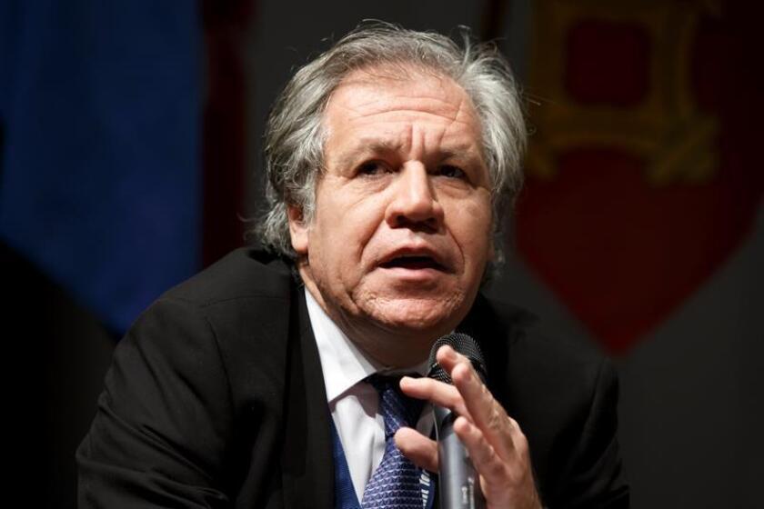 Almagro hace un llamamiento a la libertad en Cuba con motivo de Premios Payá
