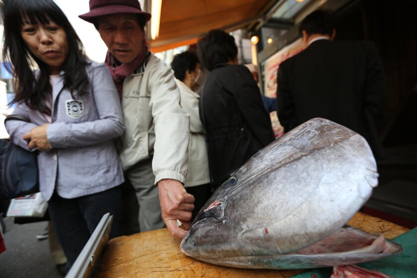 FILE - In this Friday, March 28, 2014 file photo, customers look at the head of a bluefin tuna in front of a sushi restaurant at Tsukiji fish market in Tokyo. The multi-nation fisheries body that monitors most of the Pacific Ocean has agreed to cut the catch of juvenile bluefin tuna to half of its