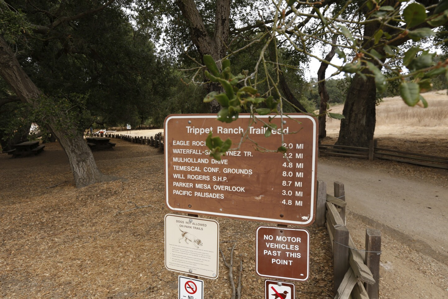 This is the start of Topanga Canyon's Trippet Ranch trail. This popular walk in the Santa Monica Mountains offers cool canyon trails and glorious ocean views.