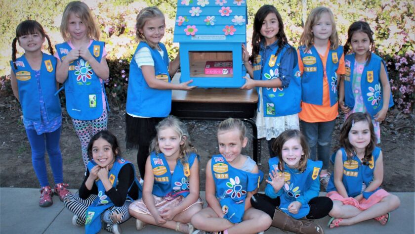 Troop 1909 from Pacific Rim Elementary won a grant to create a Little Free Library at their school.
