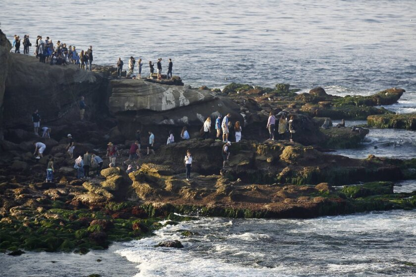 People venture near exposed rocks at La Jolla Cove