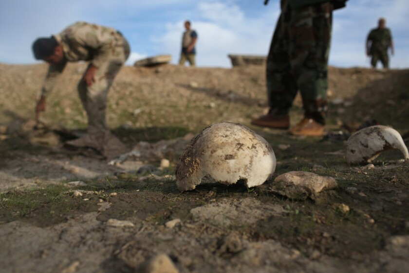 Kurdish militiamen on Sunday show what they say is a mass grave of about 50 Yazidis killed by Islamic State fighters near Sinjar, Iraq.