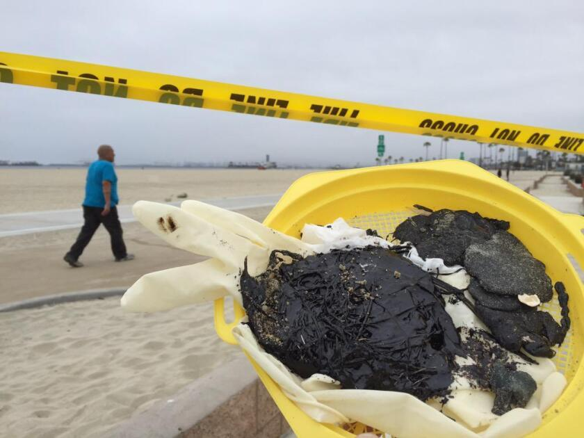 Some tar balls found on the sand in Long Beach are shown.