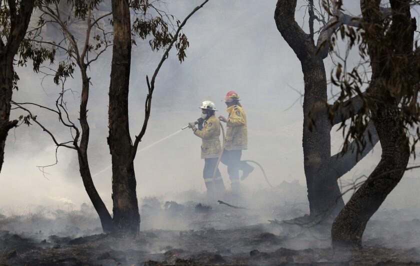 Bomberos combaten un incendio forestal en Bredbo, cerca de Canberra, en Australia