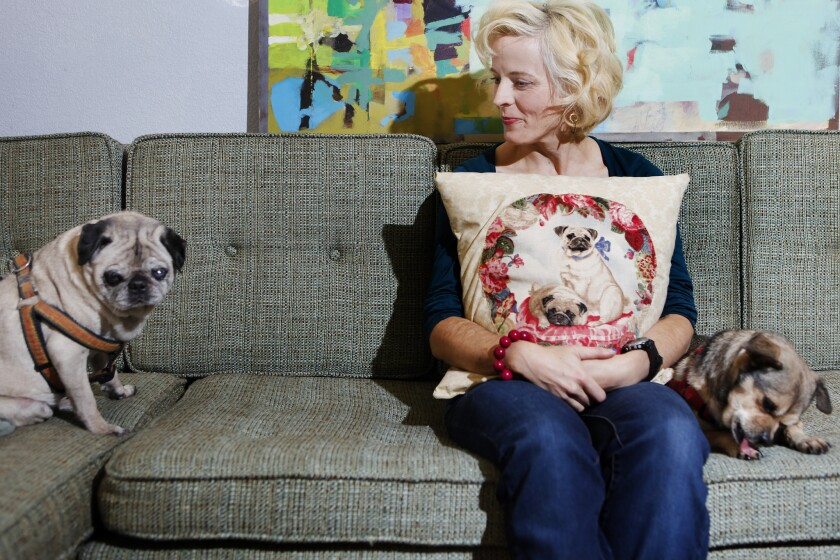Maria Bamford and friends announce premiere date for upcoming Netflix show