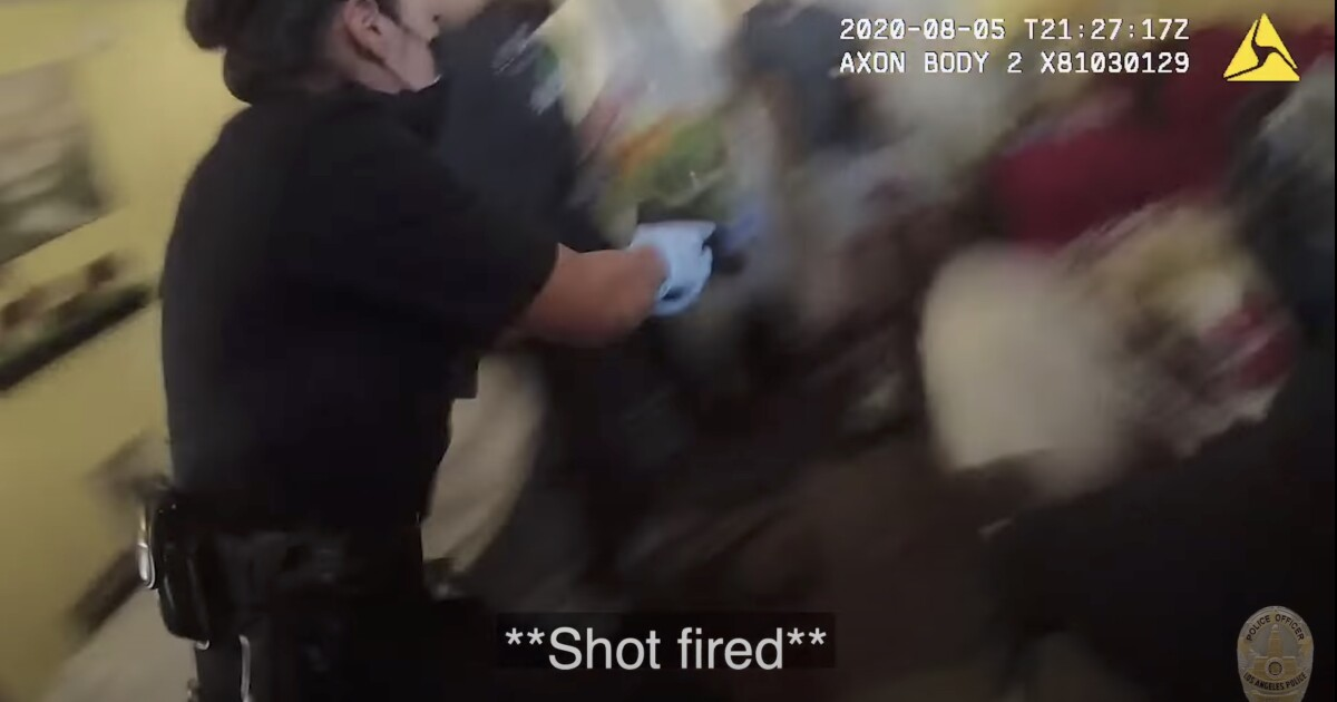 Commission blames tactics in chaotic Hollywood shooting between LAPD officers
