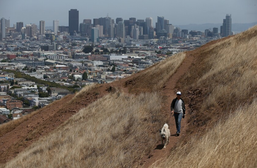 A woman walks her dog on a dried section of Bernal Heights Park in San Francisco earlier this month. The city set a new record-high temperature Friday.