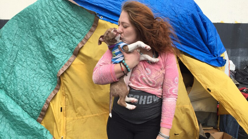 Andi Montoya, 29, with her 10-week old puppy, Hazelnut, lives in a tent in San Francisco with her husband. The base of their home is two flat Costco carts that can be wheeled away if they are forced to move.