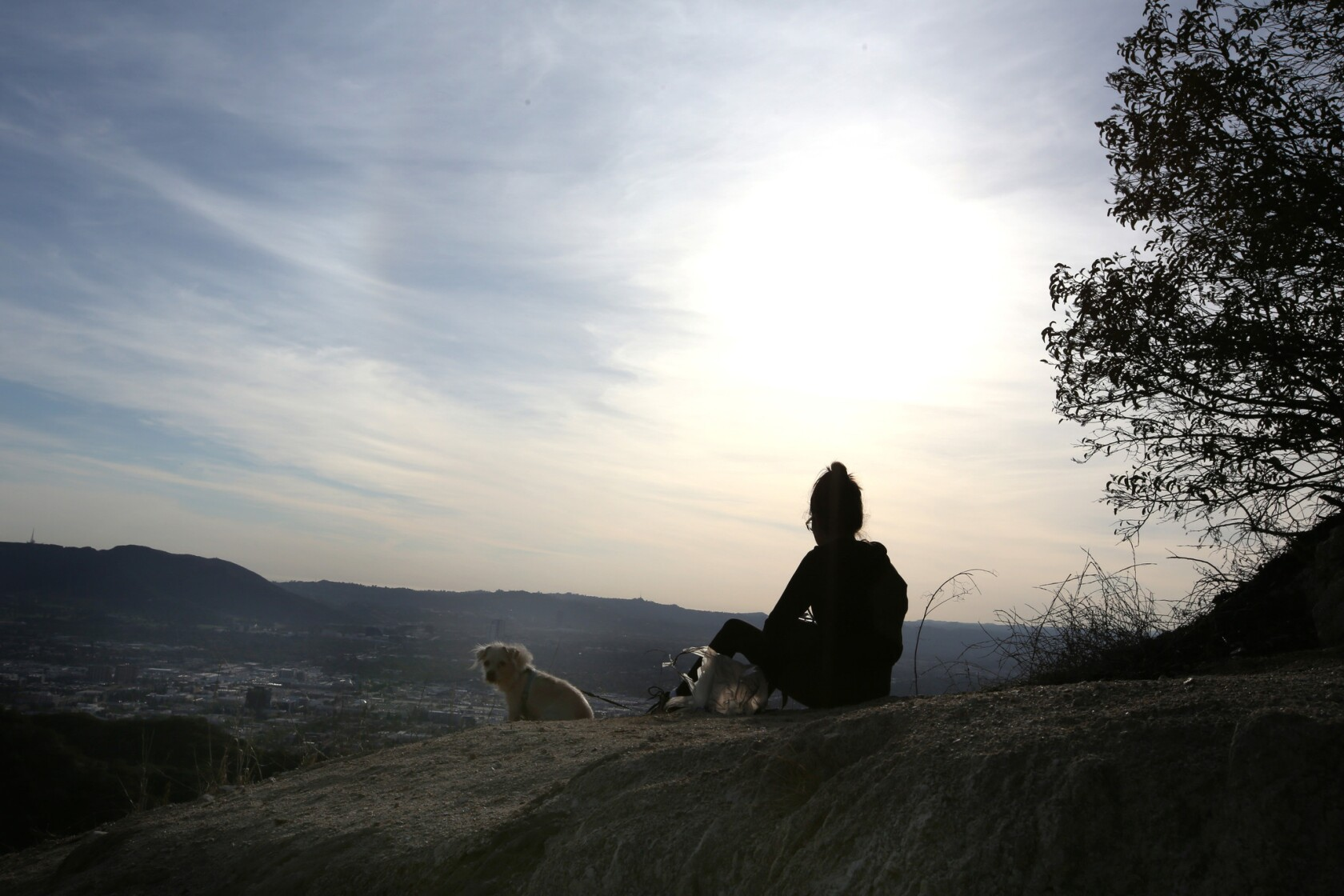 Great L.A. Walks: This short, steep hike takes you high above Burbank