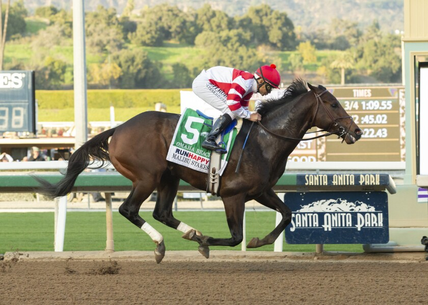 Omaha Beach and jockey Mike Smith win the Grade 1, $300,000 Runhappy Malibu Stakes on Saturday at Santa Anita in Arcadia.