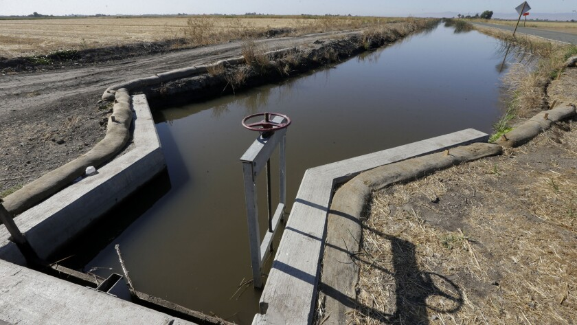 Water flows down a canal near Byron, Calif. The California State Water Resources Control Board said it's proposing a fine of $1.5 million against the Byron-Bethany Irrigation District.