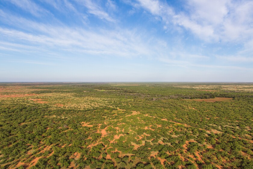 800-square-mile Texas ranch for sale