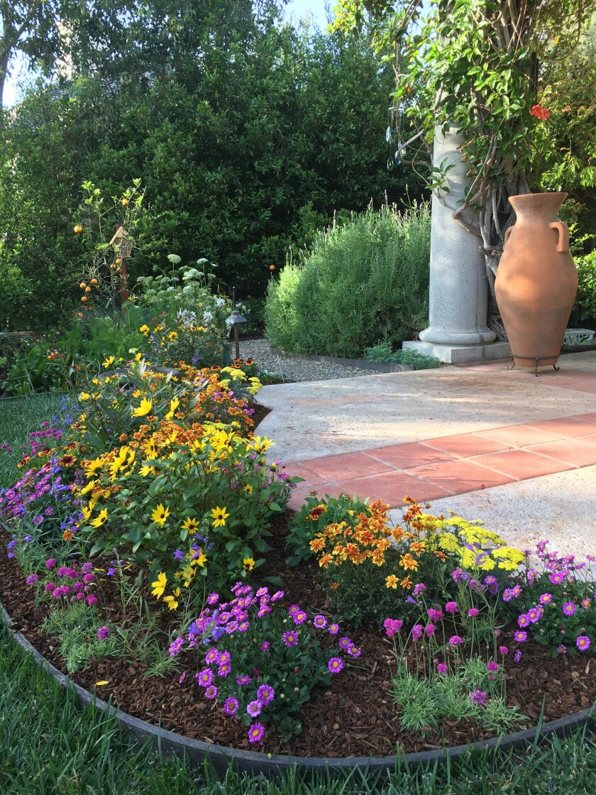 Fairbanks Ranch resident Lola Langner converted her yard to a pollinator garden.