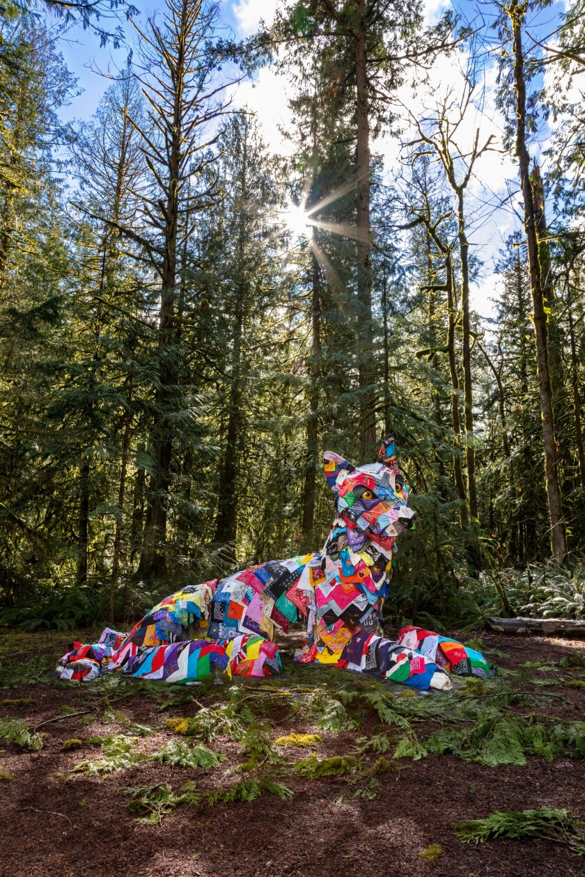 A sculpture of a canine crafted from hundreds of bandanas is shown in a forest, surrounded by tall trees