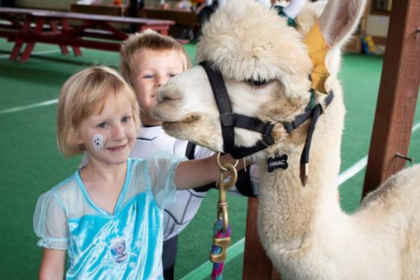 """Kids meet cuddly and """"creepy"""" critters at the Woodward Howl-O-Ween Harvest Family Festival."""