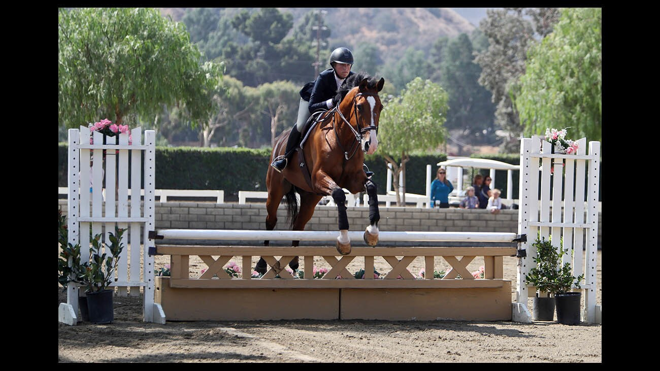 Photo Gallery: Hunter/Jumper Show at the Los Angeles Equestrian Center