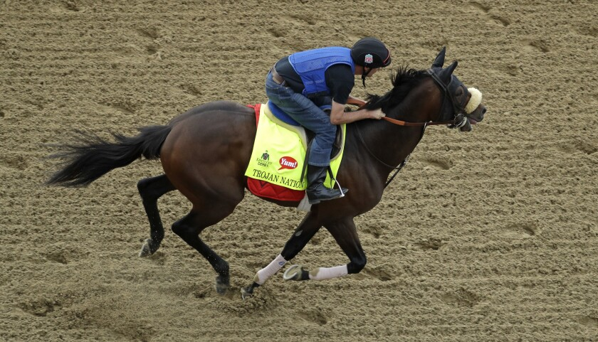Exercise rider Andy Durnin rides Kentucky Derby hopeful Trojan Nation during a workout at Churchill Downs on Wednesday.