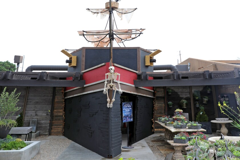 Roger's Gardens' Halloween Boutique has a nautical/underwater theme with pirates, sharks, octopus tentacles and treasure.