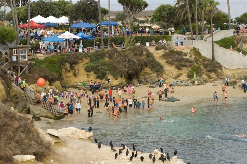 A scene from a previous relay at La Jolla Cove.
