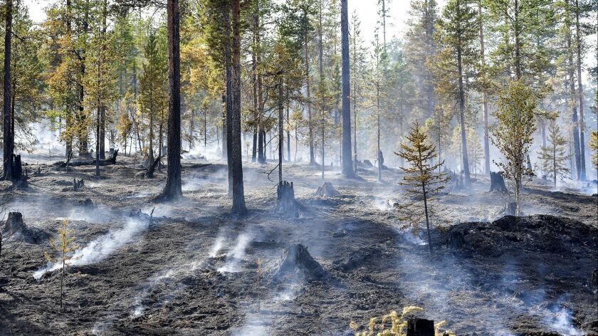A wildfire at Alvdalen field in Sarna, central Sweden, Thursday July 26, 2018. Several forest fires