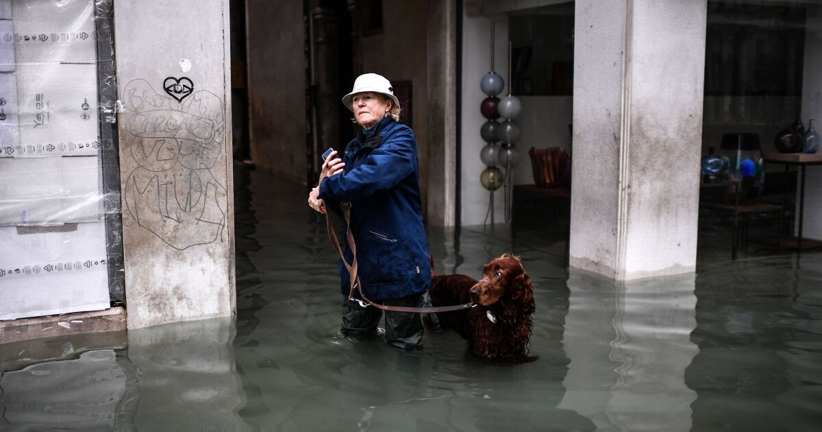 Flooding in Venice, Italy, nearly touches level of infamous 1966 flood